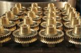 China Factory Steel Worm Gears