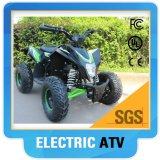 500W, 800W, 1000W Electric ATV Quad for Kids