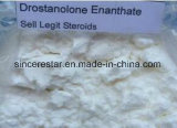 99% Purity Steroid Powder Masterone Drostanolone Enanthate for Muscle Buidling