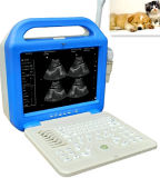 Animal/Vet Laptop Ultrasound Machine (XK/21355LCD VET)