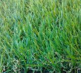 Garden Decoration Artificial Turf Popular Grass