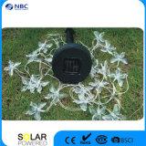 Solar String LED Lantern with 10 PCS Multicolor LED