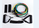Hot Sales Stackable Resistance Band Set Latex Sport Pull Rope (CPBB-002)