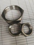 Stainless Steel Pipe Fitting 316 Hexagon Nut