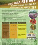 NPK Water Soluble Fertilizer 20-20-20