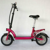 12 Inch Mini Folding Electric Bicycle with 300W Brushless Motor