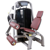 Health Club Gym Fitness Equipment/ Leg Curl / Tz-6001