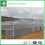 China Manufacturer 8mm Muti Span Plastic Poly Greenhouse PC Greenhouse