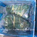 0.35 mm Twine Monofilament Fishing Net