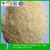 New Product Food Grade Gelatin