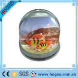 Plastic Photo Snow Globe with Picture Insert (HG103)