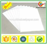 Factory Sales 300g Duplex Boards White Back
