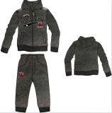 Casual Wear, Leisure Clothing, Sports Sweatshirt, Fashion Hoody Jacket with Pant (SQM-108)