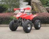 Motorcycle Factory 50cc ATV