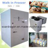 Ice Cream Walk in Freezer with Monoblock Unit