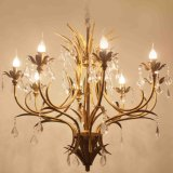 Iron Metal Chandelier Light Crystal for House Decoration (SL2222-8)