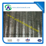 Galvanized Hexagonal Wire Netting/ Chicken Wire Mesh (hot sale & factory price)