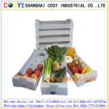 PP Corrugate/Hollow Sheet for Foood Pack Box