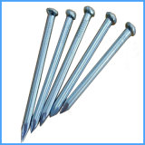 High-Strength Galvanized Steel Concrete Nail