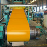 Building Material Cold Rolled PPGI Color Prepainted Galvanized Steel Coil