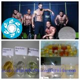Steroids Powder Nandrolone Propionate for Muscle Gain