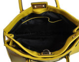 Ladies Handbag (M10034)