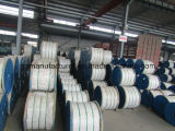 Galvanized Steel Wire Strand for ACSR Conductor