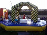 2016 Inflatable Sport Game Wrecking Ball for Kids and Adults