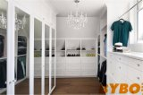 Closet with Built in Shoe Shelves Over Dresser (BY-W-49)