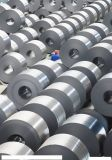 DC03 (st 13) Cold Rolled Steel for Galvanized