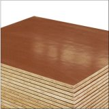 OSB Floor Board for Container with Fsc Certificate