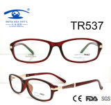New Arrival Tr90 Optical Frame (TR537)
