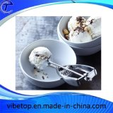 Different Style Flatware Shell Spoon
