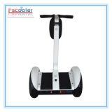 Electric Vehicles Scooter with Self-Balancing Feature CE/FCC/RoHS Marks