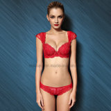 Factroy Wholesale Push-up Royal Lace Ladies Brief and Bra
