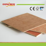 Lumber Core Plywood with Factory Price