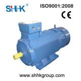 Low Voltage Yr Slip Ring Induction Motor (IP23, 1250kw)