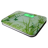 Personal Health Bathroom Scale with Green Backlight (EB851)