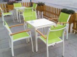 Garden Patio Furniture Set-Outdoor Dining Table and Chair (D560: S260)