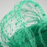 Virgin HDPE PE Plastic Agricultural Bird Netting