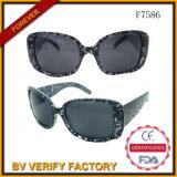 Promotional Custom Colored Plastic Sunglasses F7586