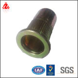 Closed and Blind Rivet Nut