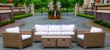 Wicker Sofa Outdoor Rattan Furniture Chair Table Wicker Furniture Rattan Furniture for Wicker Furniture (Hz-BT108)