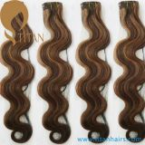 Mixed Color Indian Human Remy Clip in Hair Extensions