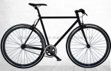 700c Classic Colorful Single Speed Bicycle/Fixie Bike (ZLF-2007S)