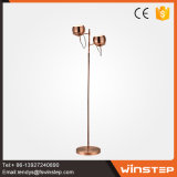 2017 New Vintage Decorative 12W E14 Floor Lamp with Ce SAA