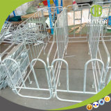 Wholesale Steel Gestation Individual Sow Pen Factory for Sale