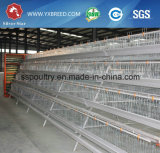 Chicken Cage/ Hen Coops Agricultural Equipment