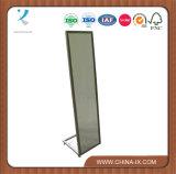 Steel Standing Full-Length Mirror