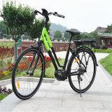 2017 Famous E Bike with MID Motor (RSEB-512)